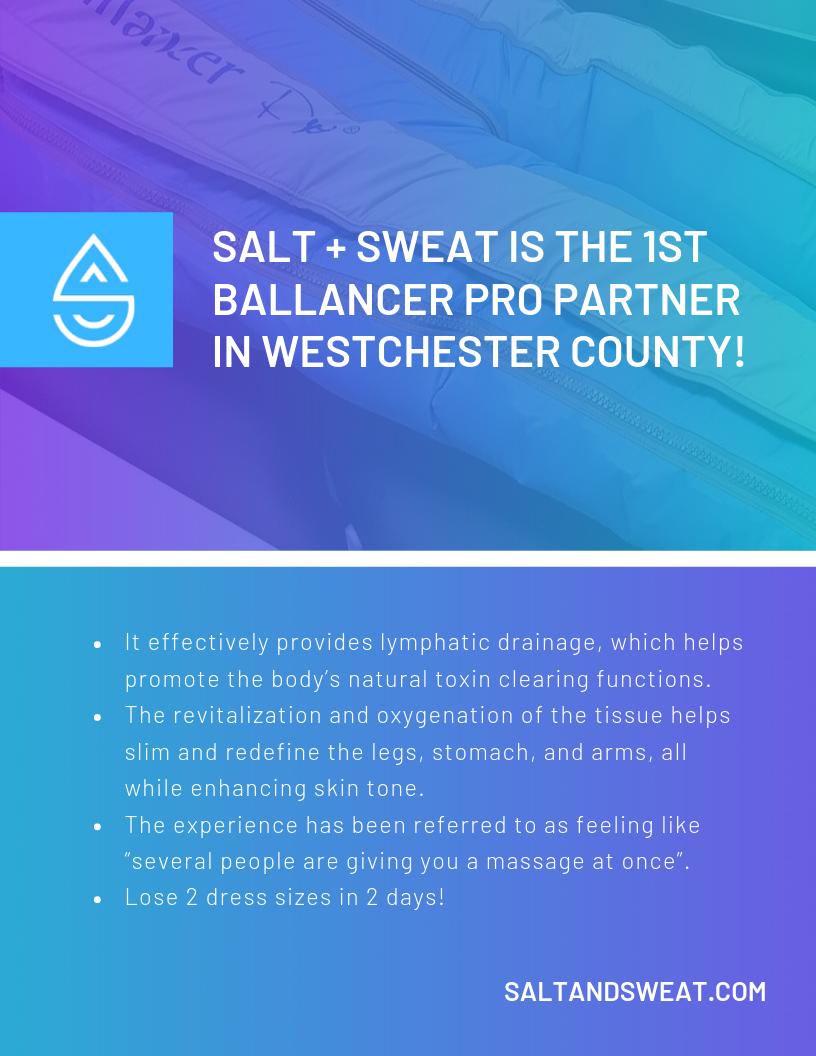 salt2019october